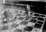 Free Picture of Men Playing Lawn Checkers