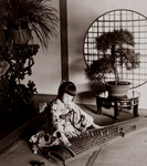 Free Picture of Girl Playing the Koto