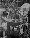 Free Picture of Boys Playing in Water
