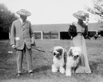 Free Picture of Couple With Old English Sheepdogs
