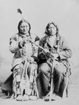 Free Picture of Sitting Bull and One Bull