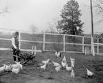 Free Picture of Booker Taliaferro Washington Feeding Chickens