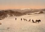 Free Picture of People and Horses on Folgefond Glacier
