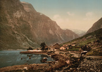 Free Picture of Cow and Village, Gudvangen, Sognefjord, Norway