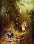 Free Picture of Butterfly Hunter With a Net in a Forest