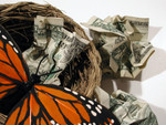 Butterfly in a Nest With Crumpled Cash