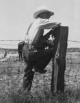 Indiana Farmer Sitting on Fence