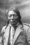 Chief White Crow