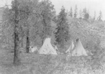 Tipis Under Trees