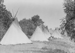 Canvas Tipis in Assiniboine Camp