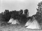 Assiniboine Indian Camp With Tipis