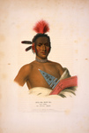 Moa-Na-Hon-Ga/Great Walker, Ioway Indian Chief