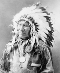 Chief American Horse, Sioux Indian