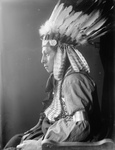 Stock Image: Sioux Native American Man Named Whirling Hawk