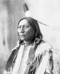 Chief Hollow Horn Bear