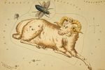 Aries and Musca Borealis