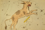 Lynx and Telescopium Herschilii Constellations