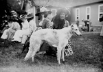 Russian Wolf Hound at a Mineola Dog Show