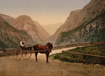 Norwegian Woman in a Carriage, Hardanger Fjord