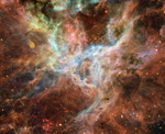 Photo of the Tarantula Nebula (30 Doradus, NGC 2070)