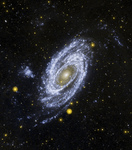 Photo of Bode's Galaxy (Messier 81, M81, NGC 3031)