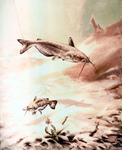 Clipart Image Illustration of Channel Catfish Swimming by a Crawdad and Fishing Hook