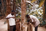 African Children Getting Their Height Measured Against a Tree