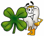 Clip Art Graphic of a Human Molar Tooth Character With a Green Four Leaf Clover on St Paddy's or St Patricks Day