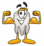 Clip Art Graphic of a Human Molar Tooth Character Flexing His Arm Muscles