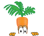 Clip Art Graphic of an Organic Veggie Carrot Mascot Character Peeking Over a Surface