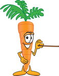 Clip Art Graphic of an Organic Veggie Carrot Mascot Character Using a Pointer Stick and Pointing to the Right