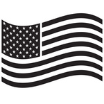 States of America flag  Waving American Flag Outline