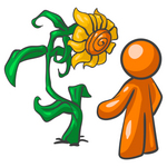 Clip Art Graphic of an orange guy character standing in front of his giant sunflower in his garden