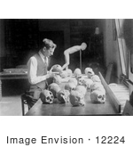 #12224 Picture Of William H Egberts Studying Skulls