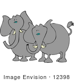 #12398 Two Elephants Clipart
