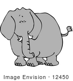 #12450 Elephant Facing Front Clipart