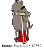 #12762 Dog With Leg In A Cast And Crutches Clipart