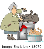 #13070 Senior Caucasian Woman Grooming A Dog And Cat Clipart