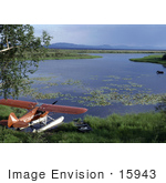 #15943 Picture Of A Wading Moose And Airplane Kanuti National Wildlife Refuge Alaska