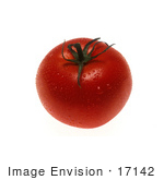 #17142 Picture Of One Whole Red Tomato With A Green Stem Wet With Water Droplets