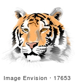 #17653 Orange Black And White Tiger Face Clipart