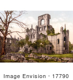 #17790 Photo Of Bare Tree And Ruins Of Kirkstall Abbey In Leeds Yorkshire England