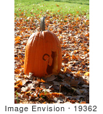 #19362 Photo Of A Halloween Jack O Lantern Pumpkin With A Cat Carving Resting On Autumn Leaves