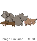 #19378 Group Of Dogs Sticking Their Tongues Out At A Dog Park Clipart