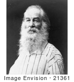 #21361 Historical Stock Photography Of Walt Whitman With A Long Beard In 1888