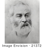 #21372 Historical Stock Photography Of Walt Whitman In 1863
