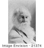 #21374 Historical Stock Photography Of Walt Whitman With Long Facial Hair