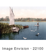 #22100 Stock Photography Of Ducks And Men In Boats On The Trinity Broads Ormesby Norfolk England