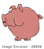 #29858 Clip Art Graphic Of A Pink Pig With A Curled Tail