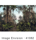 #41082 Stock Photo Of Palms Along The Shore Of The Saint Johns River In Florida